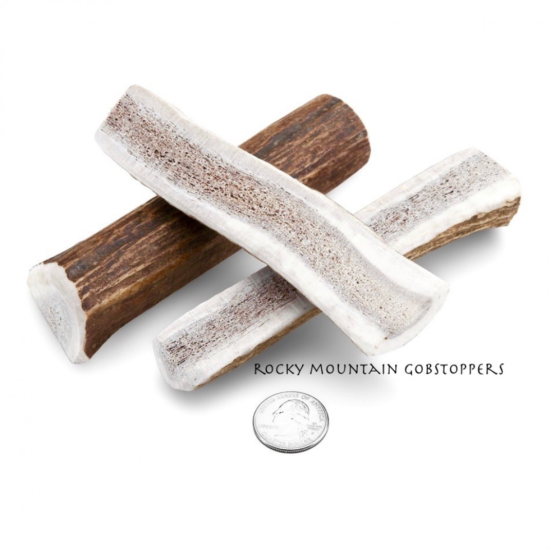 SMALL-SPLIT Rocky Mountain Gobstoppers Premium Elk Antler Dog Chews By-the-Pound